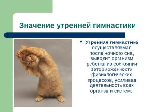 Значение утренней гимнастики Утренняя гимнастика осуществляемая после ночного сн