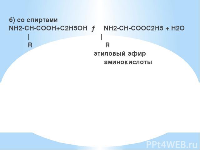 б) со спиртами NH2-CH-COOH+С2Н5ОН → NH2-CH-COOС2Н5 + H2O     R R этиловый эфир аминокислоты