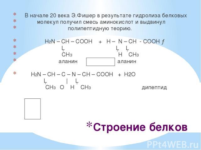 Строение белков В начале 20 века Э.Фишер в результате гидролиза белковых молекул получил смесь аминокислот и выдвинул полипептидную теорию. H2N – CH – COОН + Н – N – CH - COOH → │ │ │ CH3 H CH3 аланин аланин H2N – CH – C – N – CH – COOH + Н2О │ ║   …