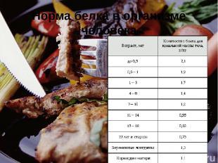 Обнаружение белка в мясном бульоне Поместите в пробирку кусочек мяса и залейте е
