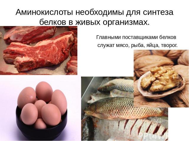 Аминокислоты необходимы для синтеза белков в живых организмах. Главными поставщиками белков служат мясо, рыба, яйца, творог.