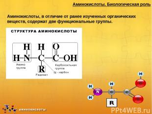 Аминокислоты. Биологическая роль Аминокислоты, в отличие от ранее изученных орга