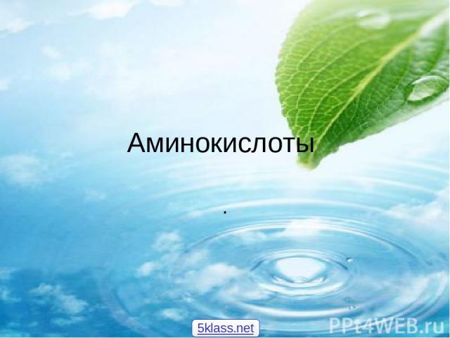 Аминокислоты . 5klass.net