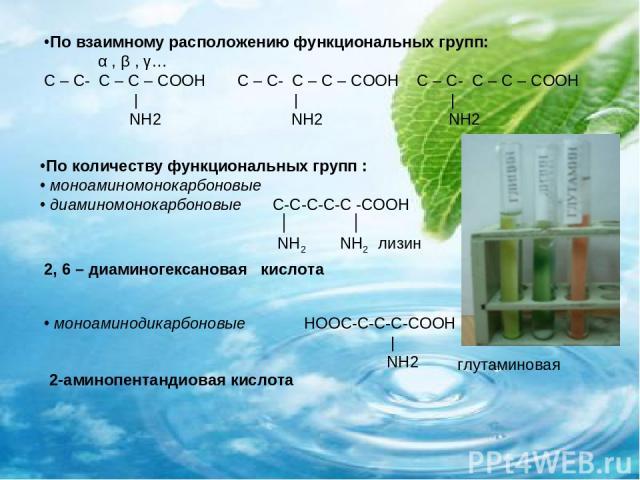 По количеству функциональных групп : моноаминомонокарбоновые диаминомонокарбоновые С-С-С-С-С -СООН ׀ ׀ NH2 NH2 лизин По взаимному расположению функциональных групп: α , β , γ… С – С- С – С – СООН С – С- С – С – СООН С – С- С – С – СООН | | | NH2 NH2…