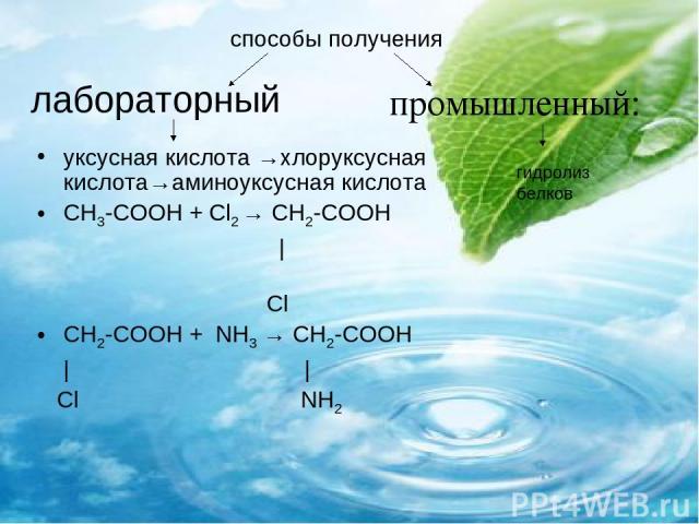 лабораторный уксусная кислота →хлоруксусная кислота→аминоуксусная кислота СН3-СООН + Сl2 → СН2-СООН | Cl СН2-СООН + NH3 → СН2-СООН | | Сl NH2 способы получения гидролиз белков промышленный: