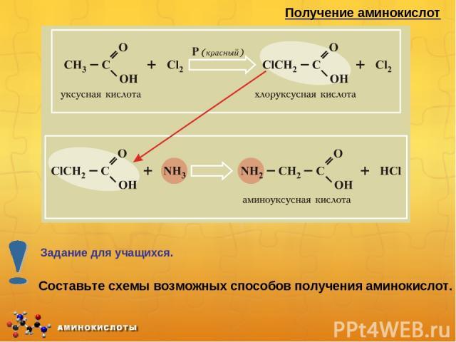 Получение аминокислот Составьте схемы возможных способов получения аминокислот. Задание для учащихся.