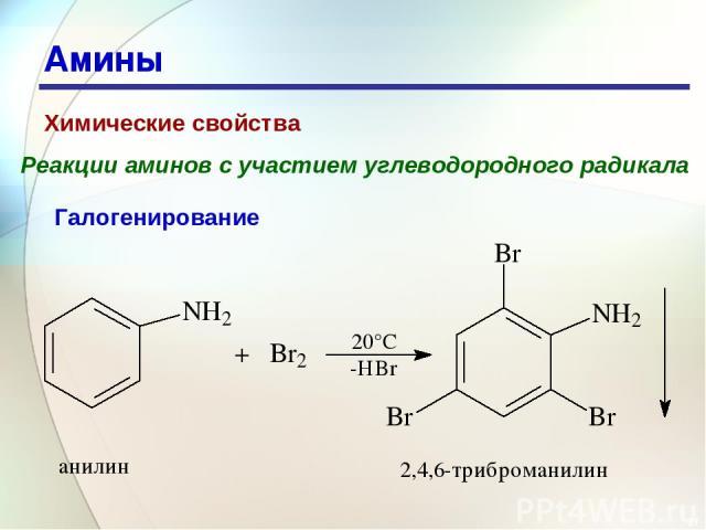 * Амины Химические свойства Реакции аминов с участием углеводородного радикала Галогенирование