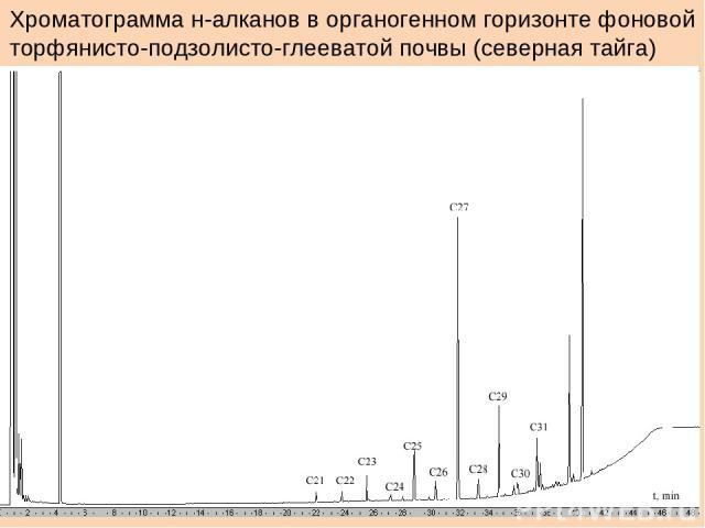 Хроматограмма н-алканов в органогенном горизонте фоновой торфянисто-подзолисто-глееватой почвы (северная тайга)