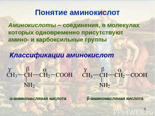 * Понятие аминокислот Аминокислоты – соединения, в молекулах которых одновременн
