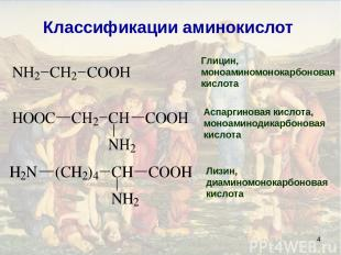 * Классификации аминокислот Глицин, моноаминомонокарбоновая кислота Аспаргиновая