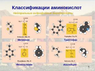 * Классификации аминокислот Нейтральные гидрофобные аминокислоты Изолейцин Фенил