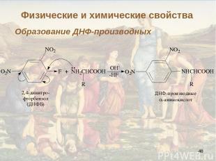 * Образование ДНФ-производных Физические и химические свойства