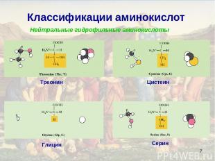* Классификации аминокислот Нейтральные гидрофильные аминокислоты Глицин Серин Т
