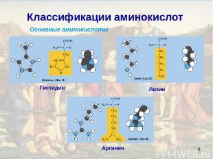 * Классификации аминокислот Основные аминокислоты Лизин Аргинин Гистидин