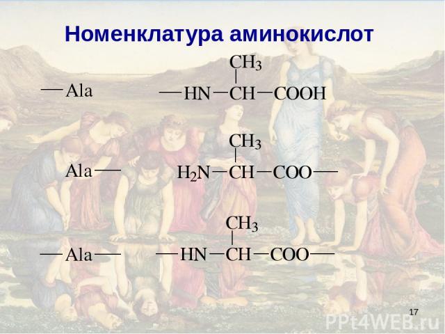 * Номенклатура аминокислот