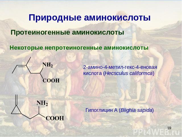 * Природные аминокислоты Протеиногенные аминокислоты Некоторые непротеиногенные аминокислоты 2-амино-4-метил-гекс-4-еновая кислота (Hecsculus califormca) Гипоглицин A (Blighia sapida)