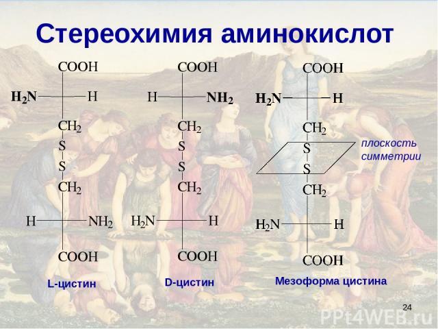 * Стереохимия аминокислот плоскость симметрии L-цистин D-цистин Мезоформа цистина