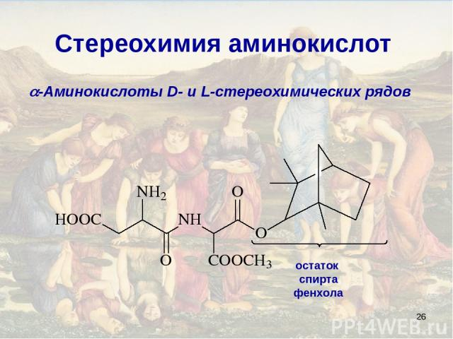 * Стереохимия аминокислот -Аминокислоты D- и L-стереохимических рядов остаток спирта фенхола