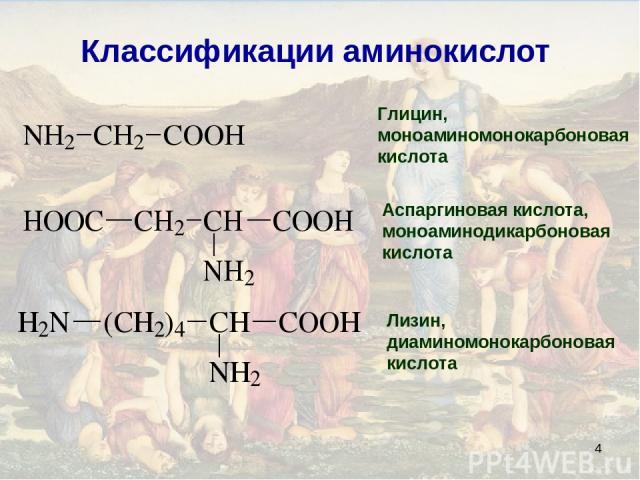 * Классификации аминокислот Глицин, моноаминомонокарбоновая кислота Аспаргиновая кислота, моноаминодикарбоновая кислота Лизин, диаминомонокарбоновая кислота