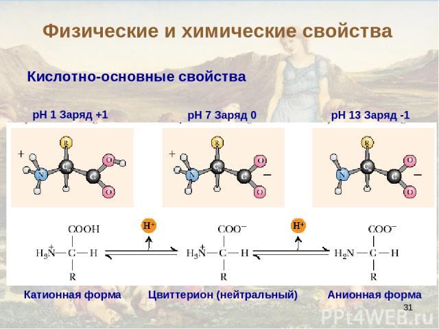 * Кислотно-основные свойства pH 1 Заряд +1 pH 7 Заряд 0 pH 13 Заряд -1 Цвиттерион (нейтральный) Анионная форма Катионная форма Физические и химические свойства