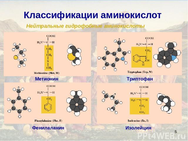 * Классификации аминокислот Нейтральные гидрофобные аминокислоты Изолейцин Фенилаланин Метионин Триптофан