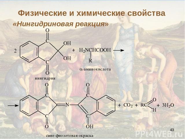 * «Нингидриновая реакция» Физические и химические свойства