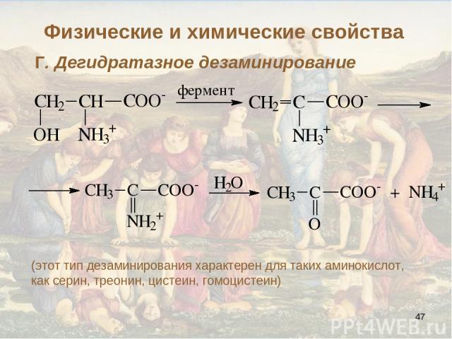 * Г. Дегидратазное дезаминирование (этот тип дезаминирования характерен для таких аминокислот, как серин, треонин, цистеин, гомоцистеин) Физические и химические свойства