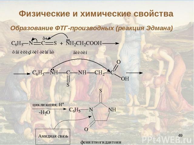 * Образование ФТГ-производных (реакция Эдмана) Физические и химические свойства