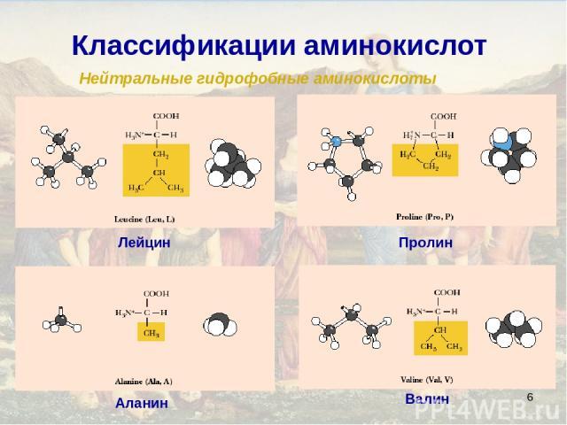 * Классификации аминокислот Нейтральные гидрофобные аминокислоты Аланин Валин Лейцин Пролин