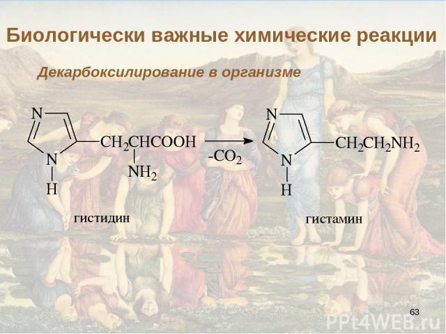 * Биологически важные химические реакции Декарбоксилирование в организме