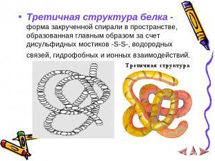 Третичная структура белка - форма закрученной спирали в пространстве, образованн