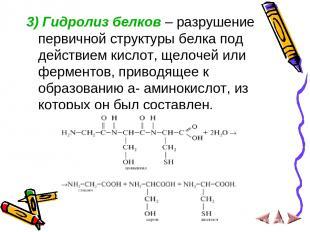 3) Гидролиз белков – разрушение первичной структуры белка под действием кислот,
