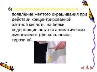 б) Ксантопротеиновая реакция – появление желтого окрашивания при действии концен