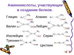Аминокислоты, участвующие в создании белков. Глицин Аланин Валин Лейцин Изолейци