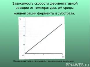 Зависимость скорости ферментативной реакции от температуры, рН среды, концентрац