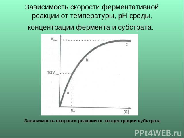 Зависимость скорости ферментативной реакции от температуры, рН среды, концентрации фермента и субстрата. Зависимость скорости реакции от концентрации субстрата