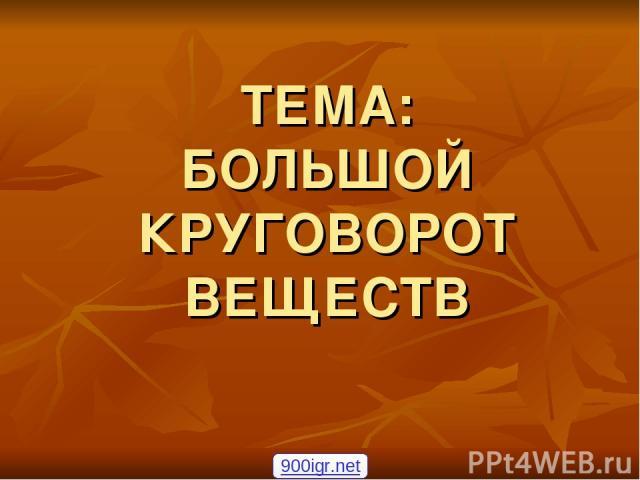 ТЕМА: БОЛЬШОЙ КРУГОВОРОТ ВЕЩЕСТВ 900igr.net