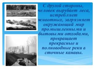 С другой стороны, человек вырубает леса, истребляет животных, загрязняет окружаю