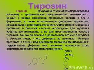 Тирози н (α-амино-β-(п-оксифенил)пропионовая кислота) – ароматическая полузамени