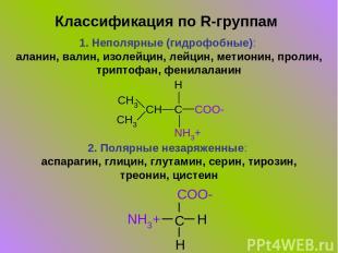 Классификация по R-группам 1. Неполярные (гидрофобные): аланин, валин, изолейцин