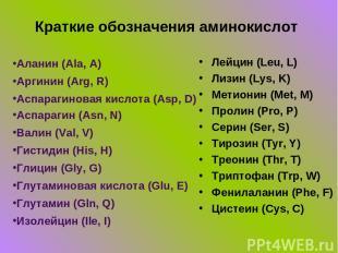 Краткие обозначения аминокислот Аланин (Ala, A) Аргинин (Arg, R) Аспарагиновая к
