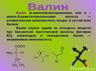 Валин (α-аминоизовалериановая, или α –амино-β-диметилпропионовая кислота — алифа