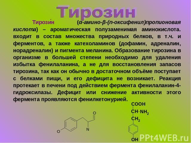 Тирози н (α-амино-β-(п-оксифенил)пропионовая кислота) – ароматическая полузаменимая аминокислота. входит в состав множества природных белков, в т.ч. и ферментов, а также катехоламинов (дофамин, адреналин, норадреналин) и пигмента меланина. Образован…