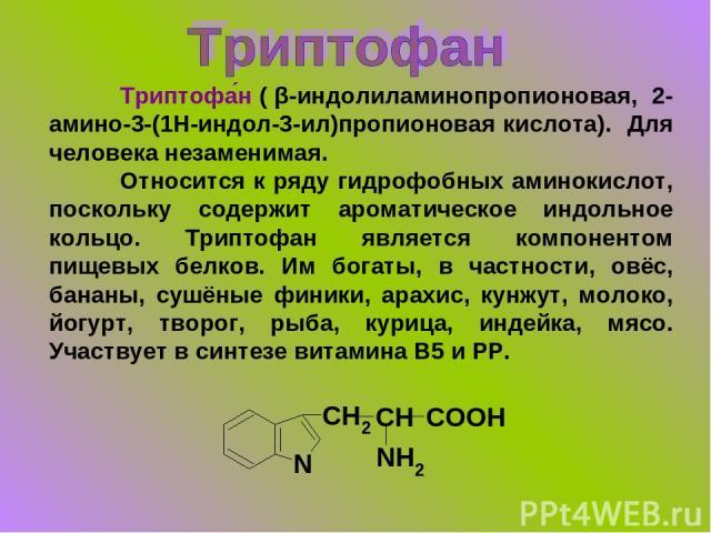 Триптофа н ( β-индолиламинопропионовая, 2-амино-3-(1H-индол-3-ил)пропионовая кислота). Для человека незаменимая. Относится к ряду гидрофобных аминокислот, поскольку содержит ароматическое индольное кольцо. Триптофан является компонентом пищевых белк…