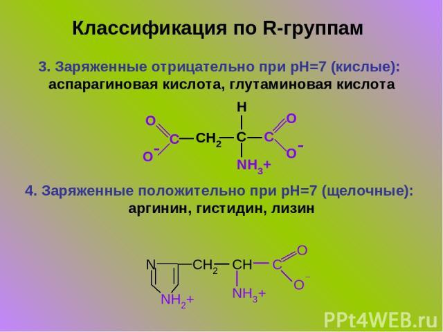3. Заряженные отрицательно при pH=7 (кислые): аспарагиновая кислота, глутаминовая кислота 4. Заряженные положительно при pH=7 (щелочные): аргинин, гистидин, лизин Классификация по R-группам