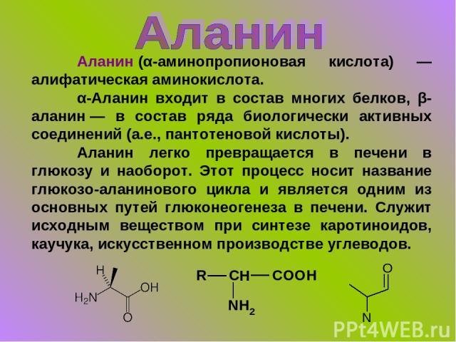 Аланин(α-аминопропионовая кислота) — алифатическая аминокислота. α-Аланин входит в состав многих белков, β-аланин— в состав ряда биологически активных соединений (а.е., пантотеновой кислоты). Аланин легко превращается в печени в глюкозу и наоборот…