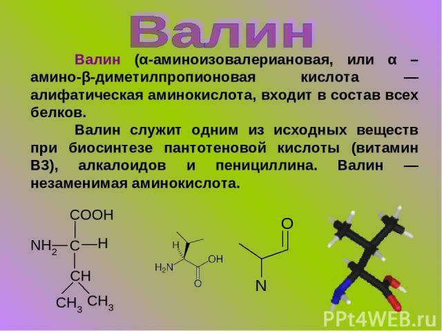 Валин (α-аминоизовалериановая, или α –амино-β-диметилпропионовая кислота — алифатическая аминокислота, входит в состав всех белков. Валин служит одним из исходных веществ при биосинтезе пантотеновой кислоты (витамин В3), алкалоидов и пенициллина. Ва…