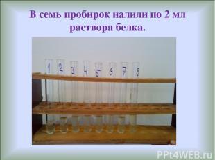 В семь пробирок налили по 2 мл раствора белка.