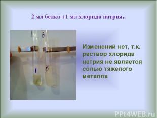 2 мл белка +1 мл хлорида натрия. Изменений нет, т.к. раствор хлорида натрия не я