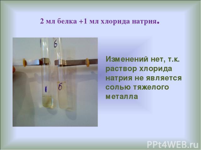 2 мл белка +1 мл хлорида натрия. Изменений нет, т.к. раствор хлорида натрия не является солью тяжелого металла